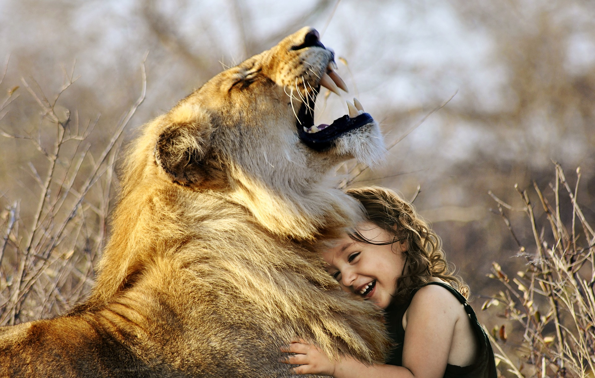 Leven met dieren